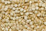 Bildo de kvinoo