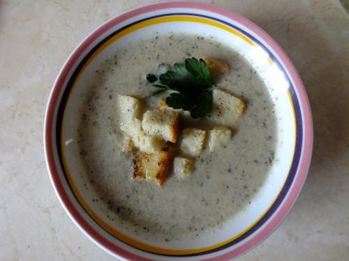 Krema supo de agarikoj